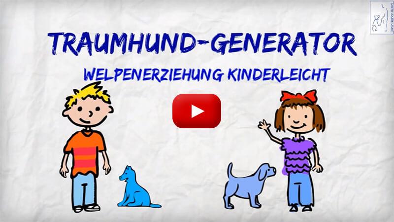 Online Hundetraining für Welpen